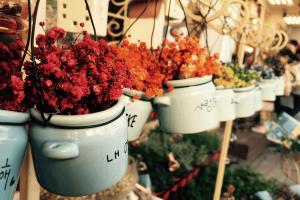 schutting regenboog van bloemen
