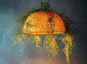 speciale hanglamp met plant